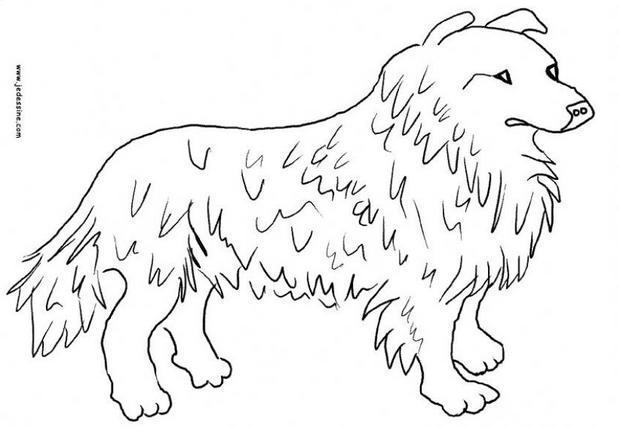 Kleurplaten Circushond.Kleurplaten Lassie Hond 1000 Images About Knutselen On Pinterest Met