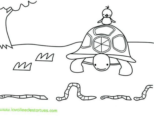 Coloriages coloriage de la tortue et les vers de terre - Dessin ver de terre ...