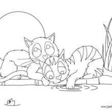 Coloriage : Deux amis chats
