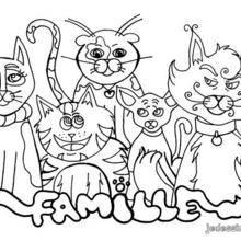 Coloriage : Famille de chats