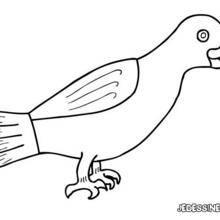 Coloriage d'un corbeau