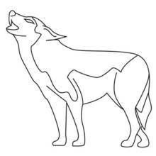 Coloriage d'un loup qui hurle