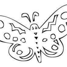 Coloriage d'un papillon N°17