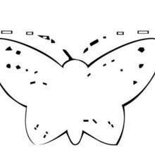 Coloriage d'un papillon N°19