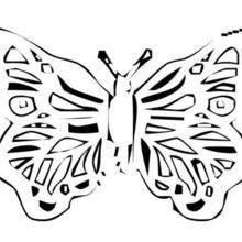 Coloriage d'un papillon N°22