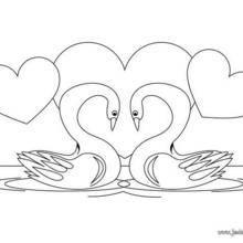 Coloriage de deux cygnes amoureux