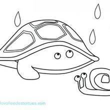 Coloriage de la tortue et l'escargot