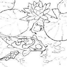 Coloriage de poissons dans les nénuphars