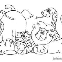 Coloriage des animaux de la jungle