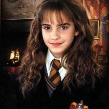 Dossier : Sang-de-bourbe (toujours dans Harry Potter)