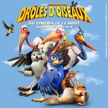 Coloriage DROLES D'OISEAUX