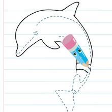 Leçon de dessin : Dessiner Winter le Dauphin