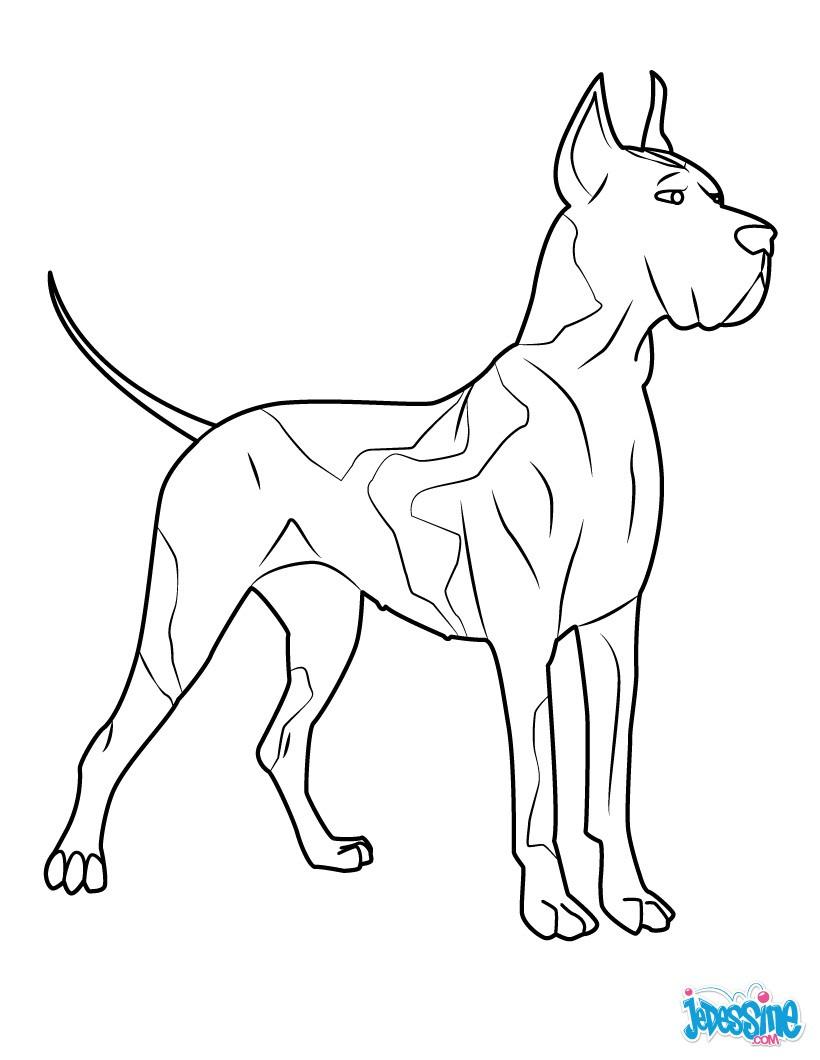 Coloriages dogue allemand - Coloriage de chien ...