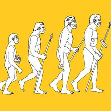Coloriage : L'evolution de l'Homme