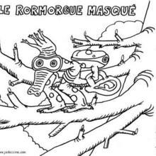 Coloriage du rormorgue masqué