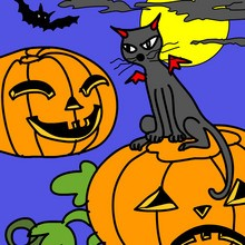 Coloriage CHAT HALLOWEEN