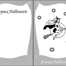 Coloriage d'Halloween : Coloriage d'une sorcière au clair de lune