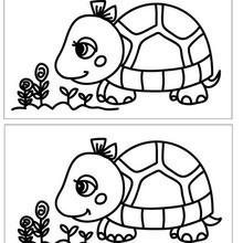 Jeu des différences : Ratatouille - Les différences