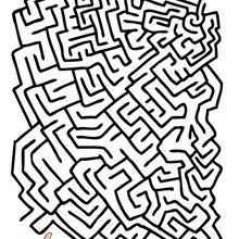 Labyrinthe cochon