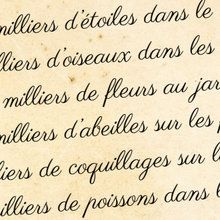 Poésie : manon pardanaud - auxerre (France)