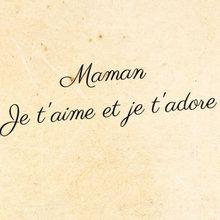 nicolas mangin-thro - lla frase (France)