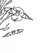 Papier à lettre chauve-souris (A4)