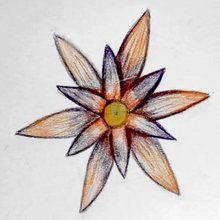 Tuto de dessin : Dessiner une rosace