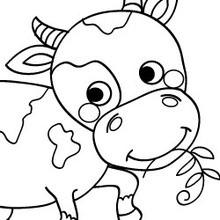 Coloriages de vaches coloriage d 39 une vache normande - Vache normande dessin ...