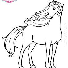 Coloriages barbie - Coloriage fleur cheval ...