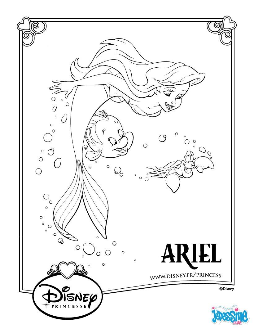Coloriages ariel et polochon - Jeux de ariel et son prince ...