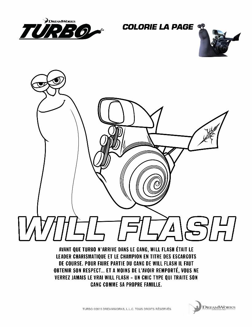 WILL FLASH