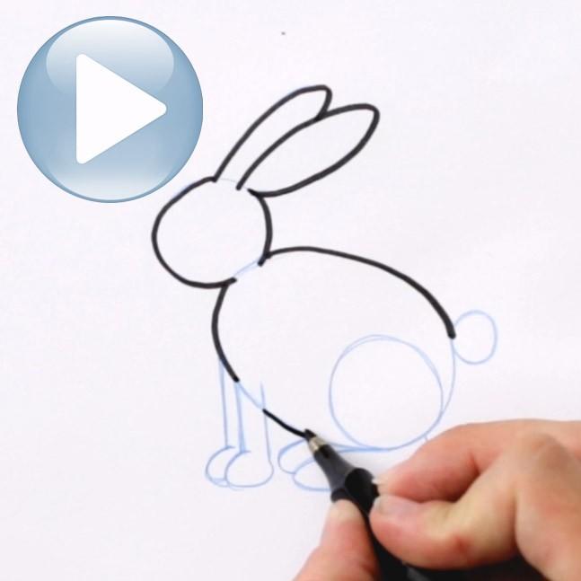 dessiner un lapin