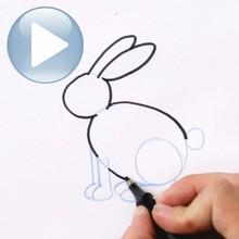 Tuto de dessin : Dessine un lapin