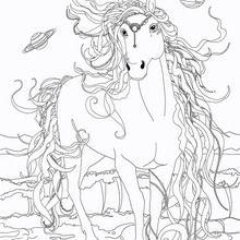 Coloriage : La belle Vénus de Bella Sara