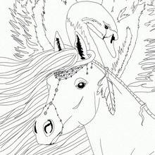Coloriage : Cheyenne et le cygne, Bella Sara