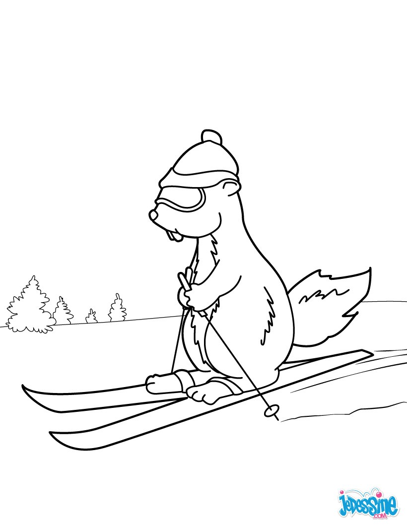 Coloriages marmotte ski - Coloriage ski ...
