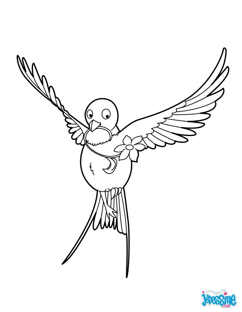 Comment dessiner une hirondelle facilement - Comment dessiner une fleur facilement ...