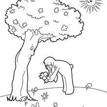 Cueillette de fleurs