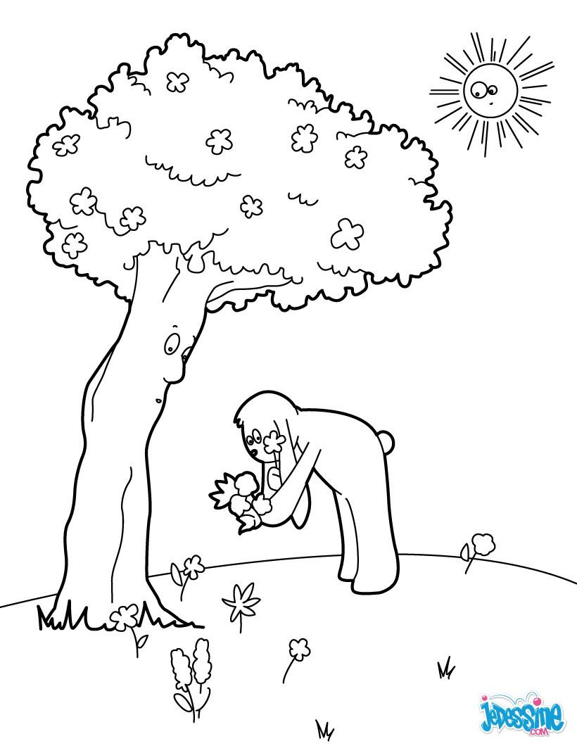 Coloriage : Cueillette de fleurs