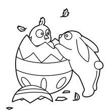Coloriage : Poussin et lapin de Pâques
