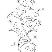 Coloriage des roses de la Saint-Valentin