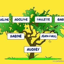 Comment faire ton arbre généalogique.