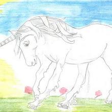 Dessin : La licorne de Carmen