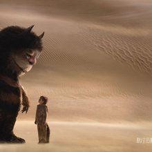 Max et les MAXIMONSTRES : Dans le désert
