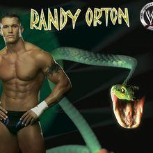 Fond d'écran : Randy Orton