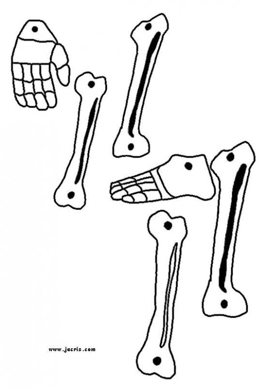 Le squelette d'Halloween partie 1