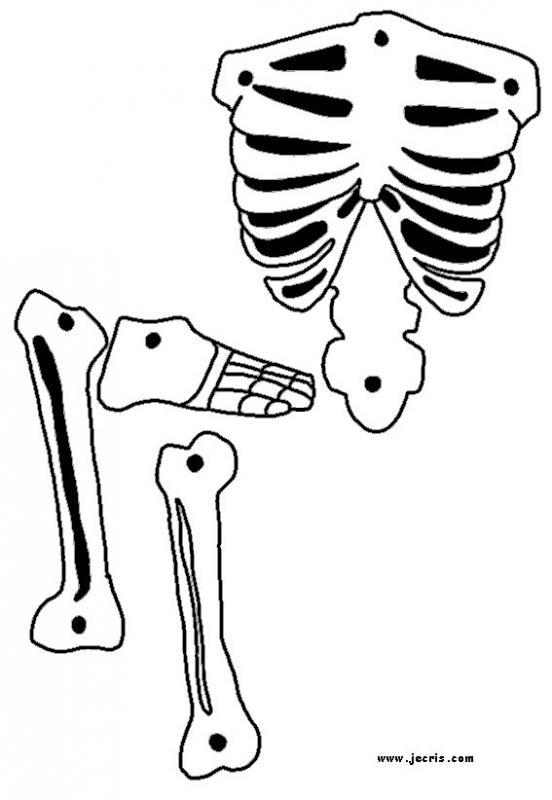 Le squelette d'Halloween partie 3