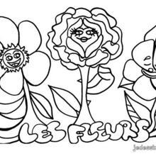 Coloriage de fleurs des champs