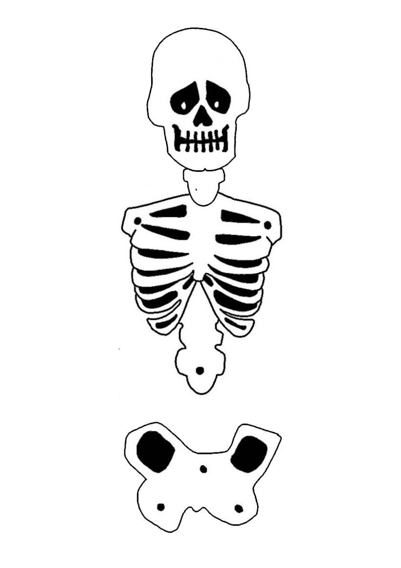 Le tronc du squelette d'Halloween