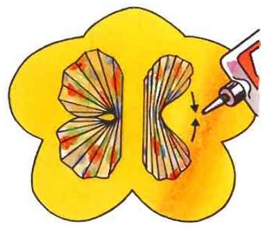 La carte papillon
